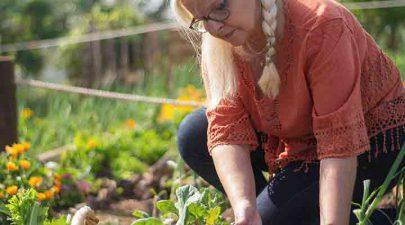 oogsten in september